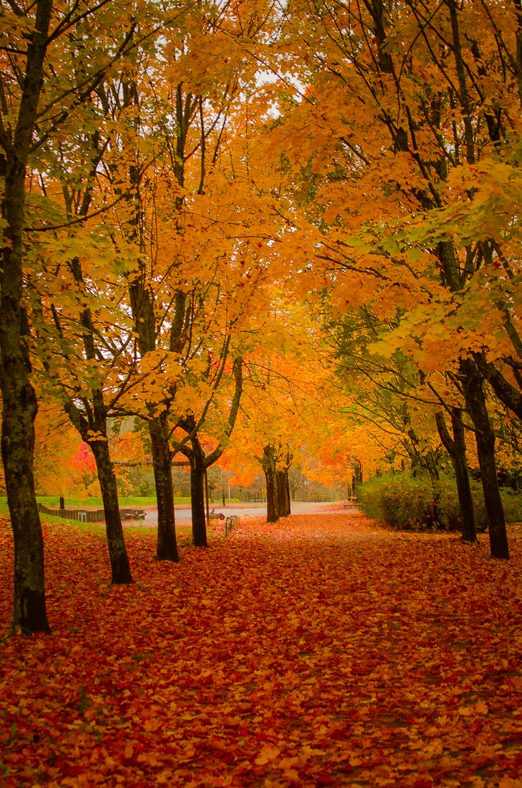 17 Best Images About October On Pinterest