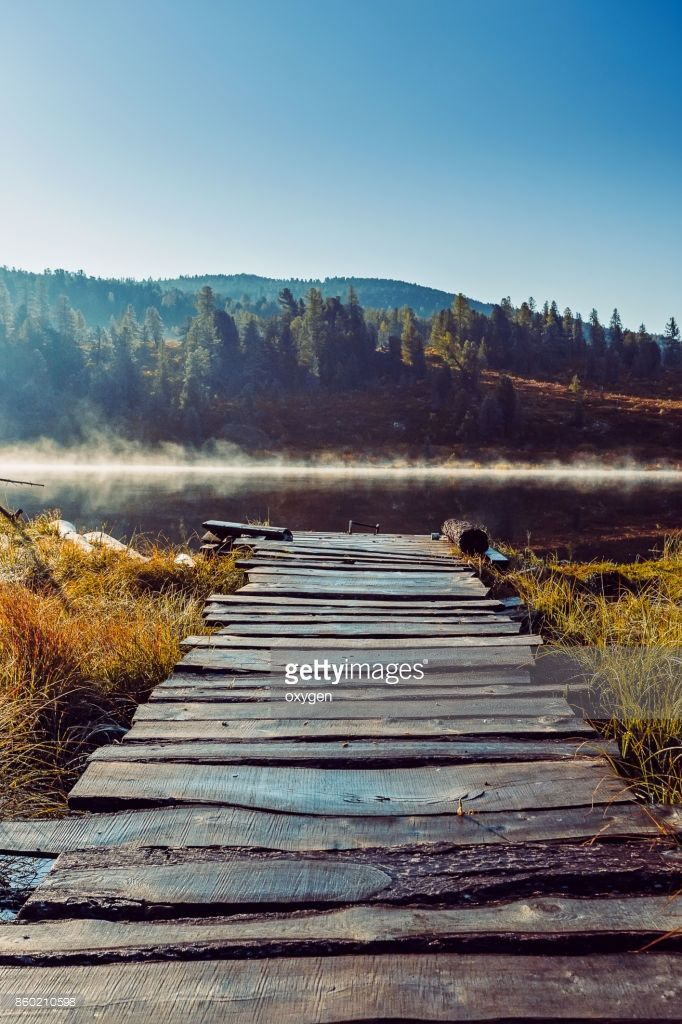 Stock Photo : Wooden road to lake on morning sunshine on Altai mountain, Ulagan. Russia by Oksana Ariskina on @gettyimages. #OksanaAriskina #Photography #Nature #Altai #Altay #Mountain #Russia #Ulagan #Lake #Morning #Fence  #gettyimages #gettyimagescreative  #gettyimagesnew #getty #gettycreative