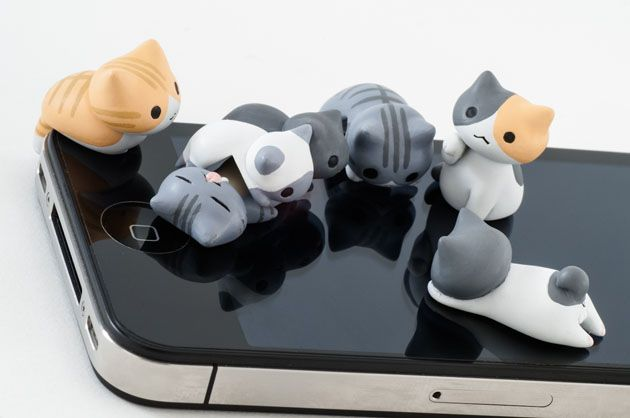:3: Cats, Cat Meow, Cute Cat, Jack O'Connell, Dust Plugs, Ears, Accessories, Earphones Jack, Mobiles Phones