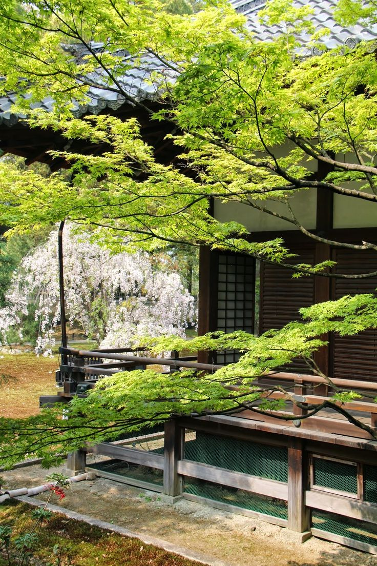 Shoren in Kyoto Japanese HouseJapanese GardensZen 17