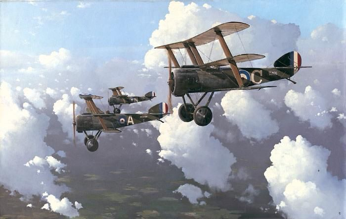 3664 best WWI Military Aircraft images on Pinterest