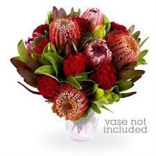 australian native flower arrangements - Google Search