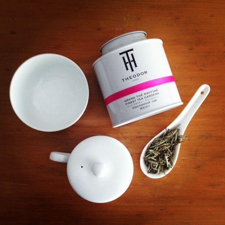 Resultado de imagen para Theodor tea