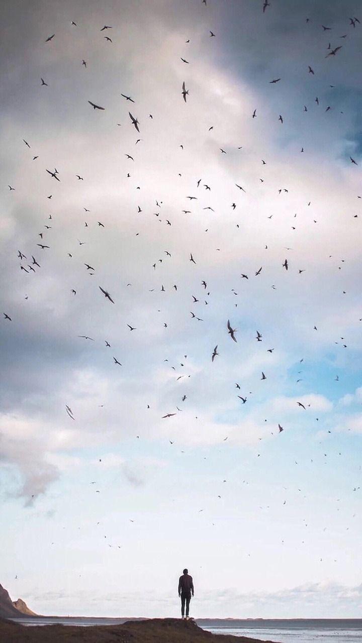بعض الأصدقاء كالطيور ترحل إذا تغير الجو Adventure Aesthetic Dreamy Photography Photo