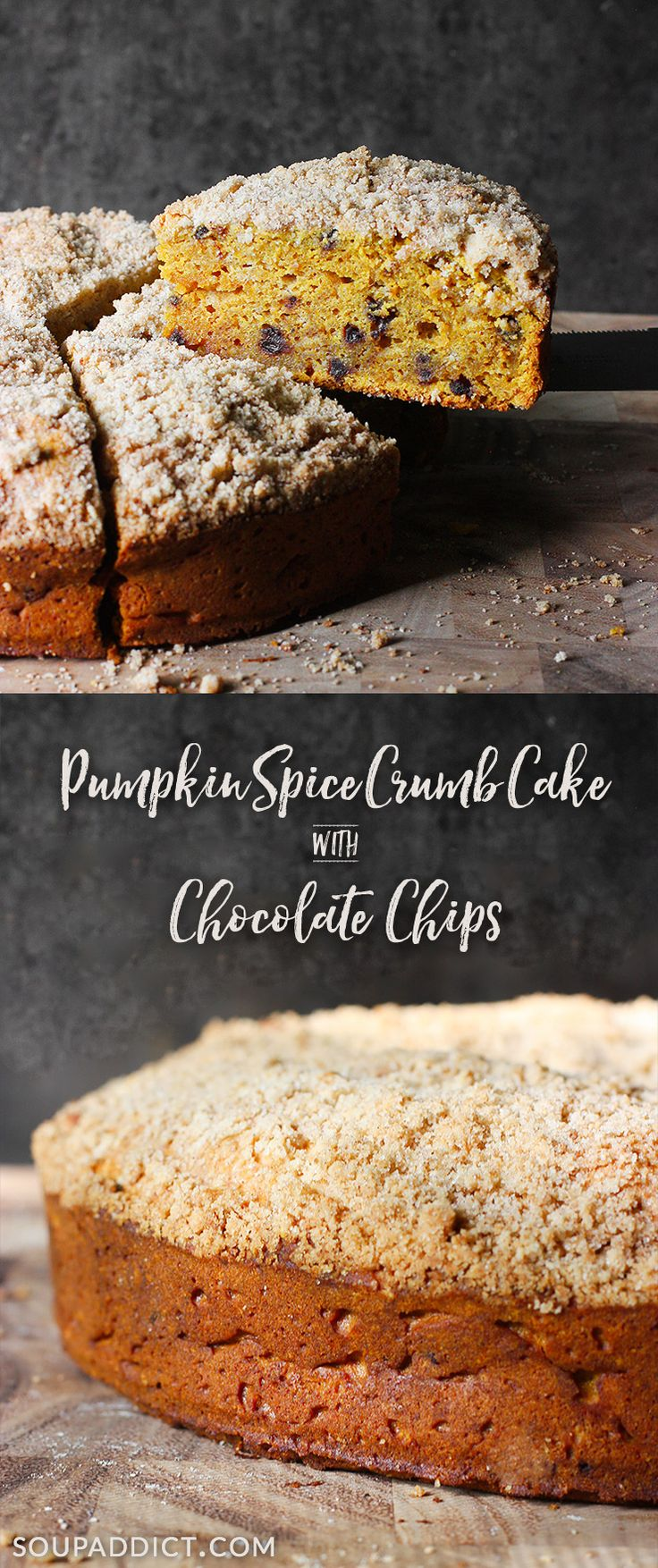 Pumpkin Spice Crumb Cake with Chocolate Chips