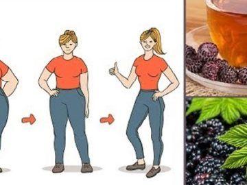 Zrzucanie nadmiarowych kilogramów to nie jest łatwe zadanie. Jest to tym bardziej ciężkie, jeśli zakorzeniliśmy już w swoim życiu złe nawyki żywieniowe. Jeśli postanowiłeś zacząć chudnąć, pewnie wiesz, że pomimo sporych zmian w stylu życia, waga
