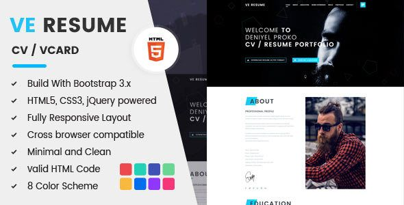 VE RESUME - Personal Portfolio CV / Resume Site Templates / Specialty Pages / Resume / CV by BDEXPERT