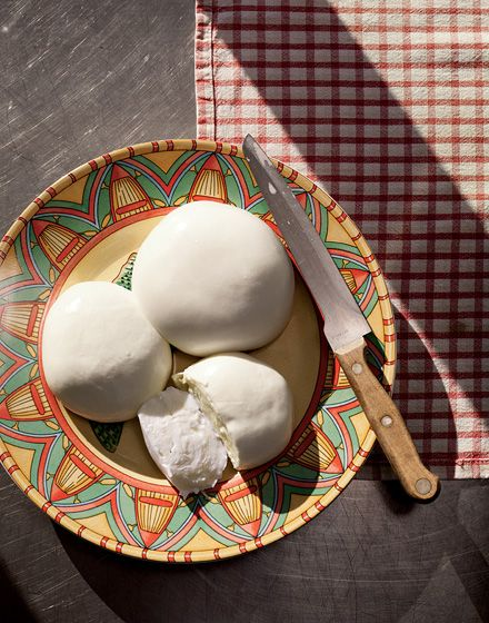 Buffalo Mozzarella, the Great White Whale of American Cheesemaking