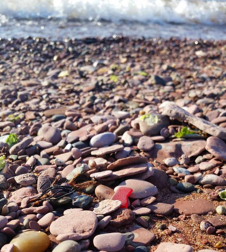 Best Beach In Santa Cruz For Shells
