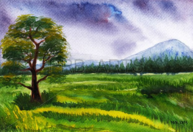 Watercolor Painting Of Rice Paddy Field Landscape Watercolorarts