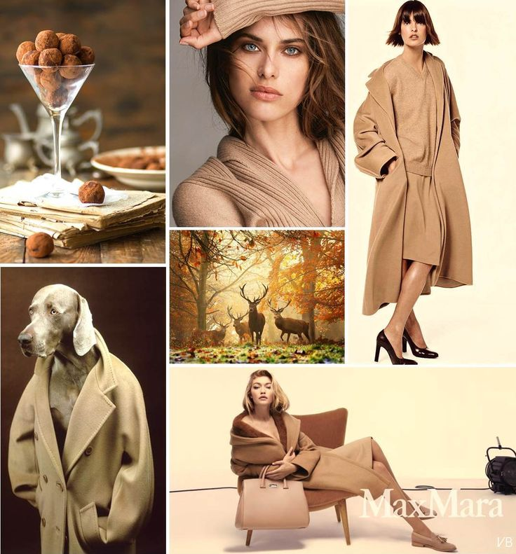 ..LIFESTYLE, In autunno.. é Camel Mania! (ieri come oggi) READ MORE on BNDThings.blogspot.com..