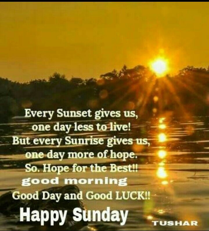Pin By Shehnaaz Omar On Good Wishes Happy Sunday Quotes Happy