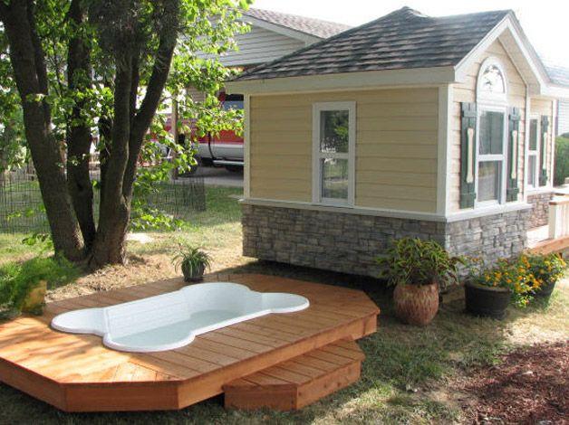 Casa perro alberca dog house pool