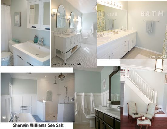 Sherwin Williams Paint - Sea Salt  I love how sometimes you think it is gray & sometimes blue or green - ready to paint!