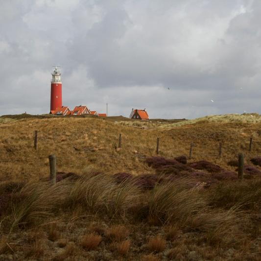 Texel <3