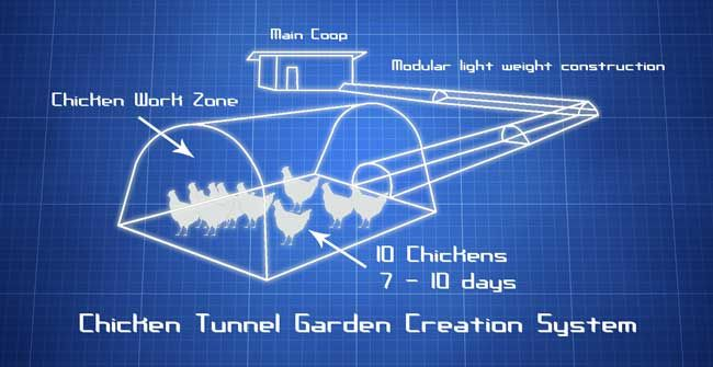Chicken Tunnels. Let your chickens till and fertilize your old garden bed while being contained.