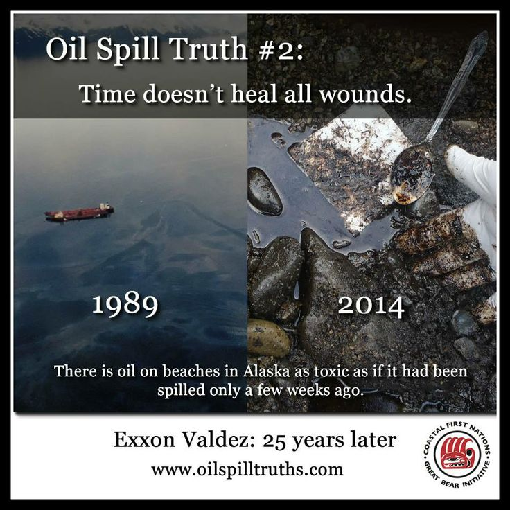 25 years after the Exxon Valdez oil spill, scientists have found oil on beaches in Alaska that is just as toxic as if it had been spilled only a few weeks ago. Visit http://oilspilltruths.com/ to learn 10 truths about oil spills and protect the BC coast by supporting the Coastal First Nations' ban on oil tankers.