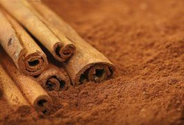 The Hot Water, Honey & Cinnamon Diet | LIVESTRONG.COM