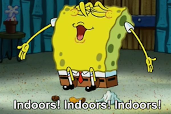 Stay inside. | The 23 Wisest Things Spongebob Ever Said_____ my life story
