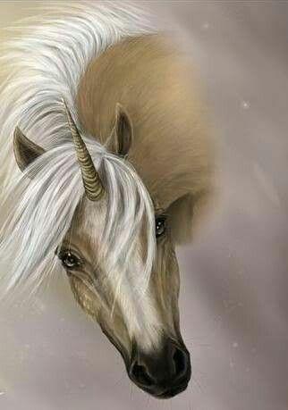 Sunset my dream horse part unicorn palomino mare.