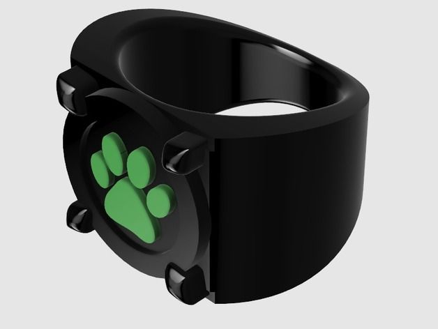 Cat Noir's Ring (Miraculous Ladybug) by PiggyJJ - Thingiverse