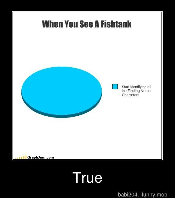 This i litually me...so true that itd not funny...lol