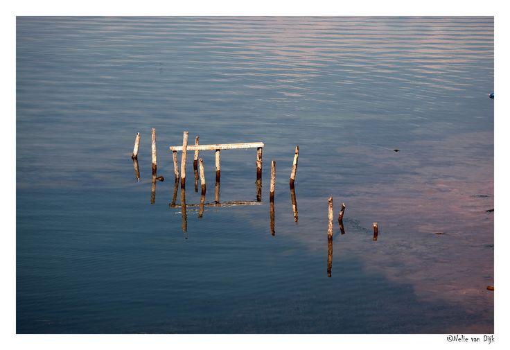 Oude stijger Skadar meer, Montenegro