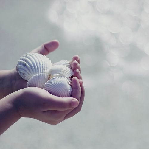 : At The Beaches, Shells Collection, Sea Shells, Photo Ideas, Hands, The Ocean, Magic Places, Seashells, The Sea