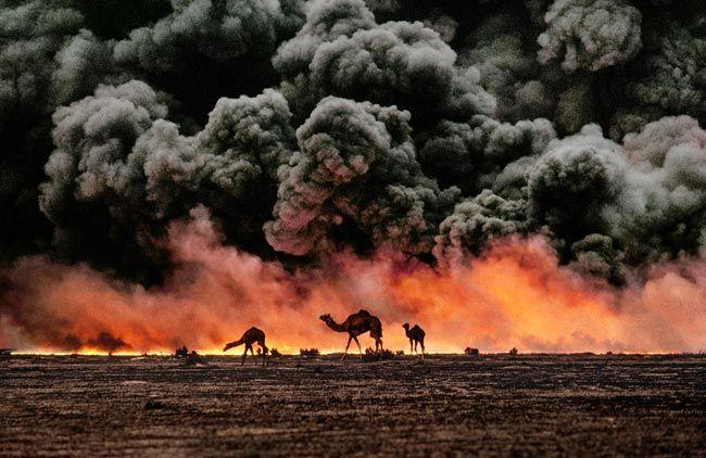 Fotograaf: Steve McCurry / Worstelen kamelen aftekenen tegen de olie-het-vuren, Al-Ahmadi olieveld, Koeweit, 1991
