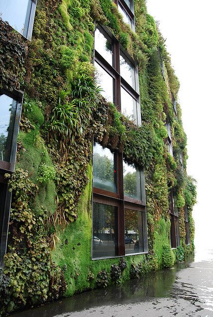A big and gorgeous green wall in Sao Paulo #GreenWall #Garden #Architecture