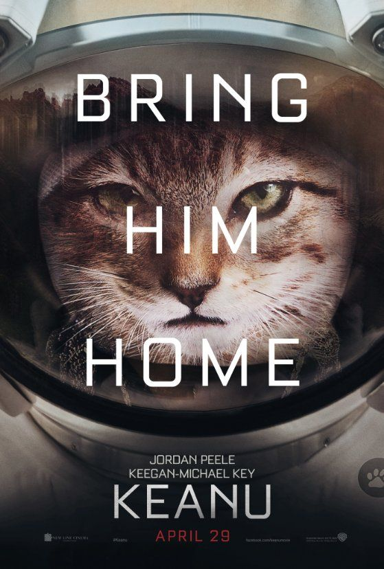 New Movie.  With cats!