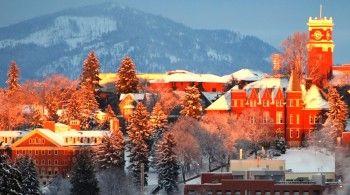 Washington State University, Pullman, Washington