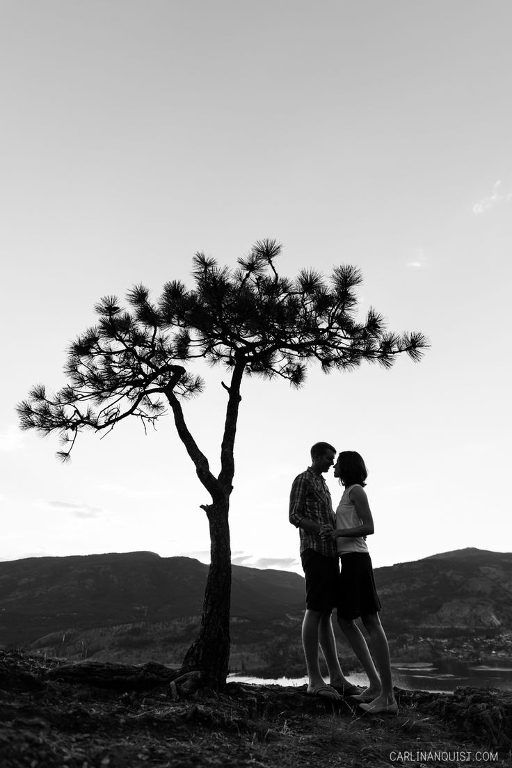 Silhouette | Kelowna Wedding Photographer | Knox Mountain Engagement Session