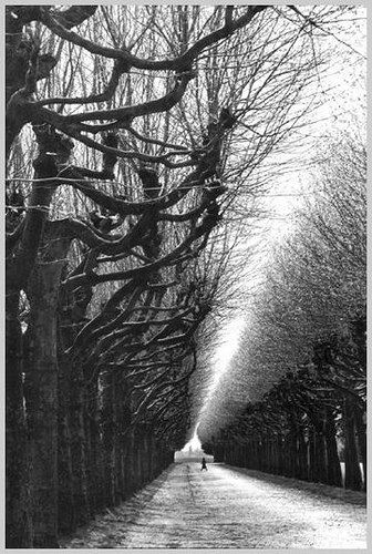 Martine Frank - Observatoire de Meudon, France, 1991