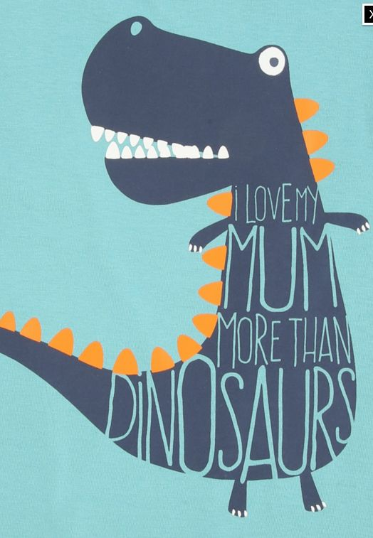 Boys dinosaur graphic with slogan