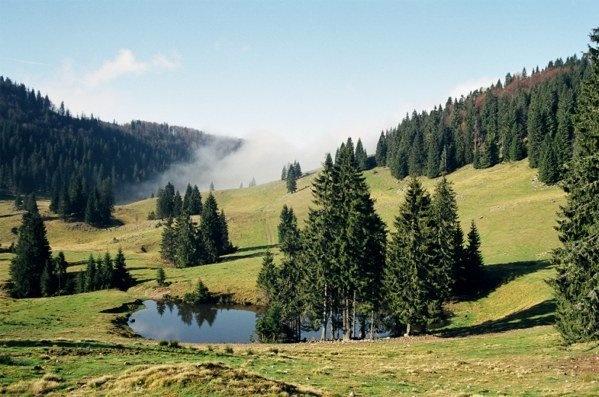 Romania - Poiana Varasoaia, Muntii Bihor.