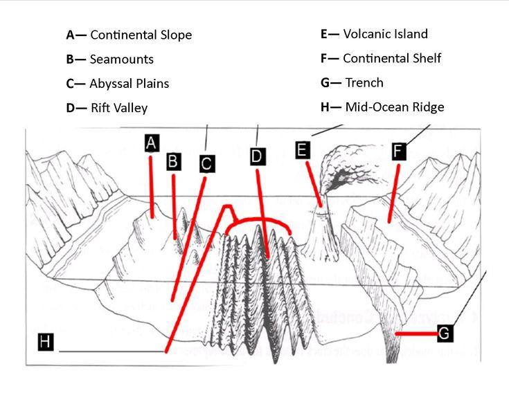 Oceans thinglink for Ocean floor zones diagram