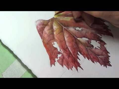 Painting Grape leaves tip 14. Helen Fitzgerald