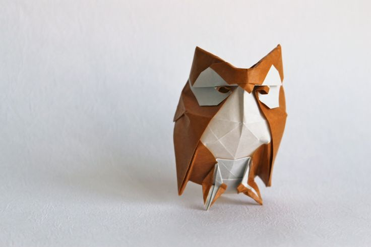 Origami owl by Roman Diaz                                                                                                                                                     More