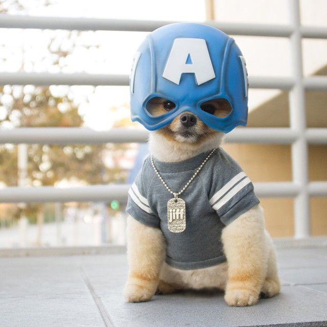 Meu super heroi                                                                                                                                                                                 Mais
