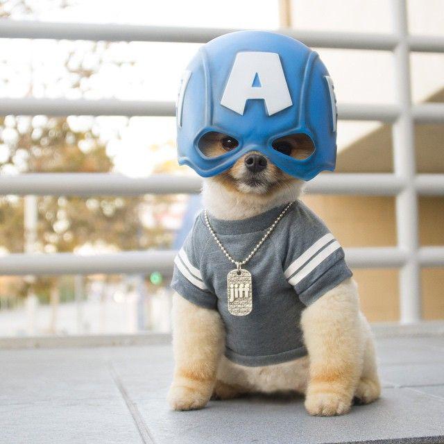Meu super heroi