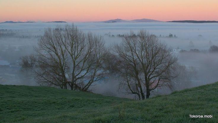 Tokoroa Winter Morning Fog