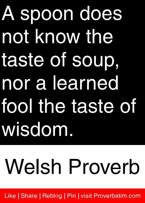 A spoon does not know the taste of soup, nor a learned fool the taste of wisdom. - Welsh Proverb #proverbs #quotes