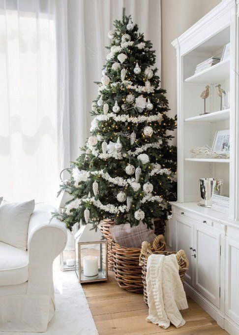 1000+ ideas about Pied De Sapin on Pinterest | Firs, Christmas and ...