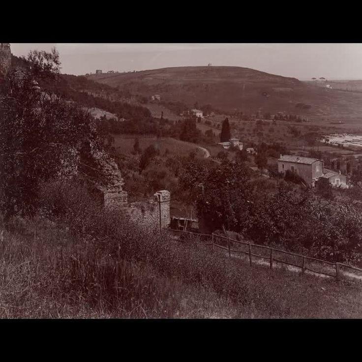 Vista da villa Madama