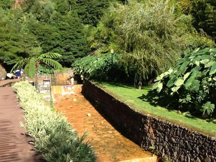 Poça da Beija em Furnas, Azores Lugar incrível para um banho em água termal. Divinal