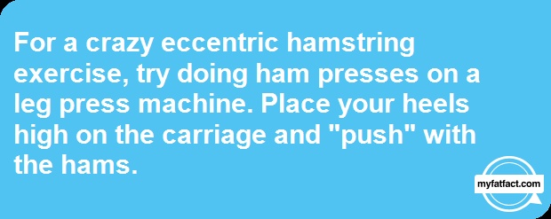 """Leg Press Ham-Blaster --  For a crazy eccentric hamstring exercise, try doing ham presses on a leg press machine. Place your heels high on the carriage and """"push"""" with the hams. Learn more: http://myfatfact.com/fatfact/Leg-Press-Ham-Blaster/hkVYQaANfUc= #Myfatfact #exercise #bodybuilding"""