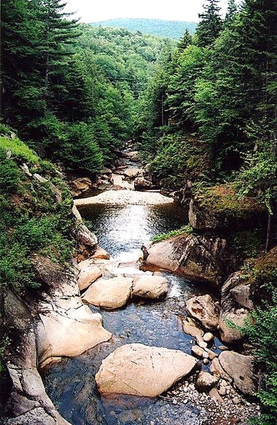 NH – Franconia Notch State Park, Grafton county, New Hampshire, USA. Flume Gorge with the Flume Brook is located off of the Styles Bridges Highway (Interstate 93), 4.2 miles (6.7 kilometres) north of the town of Lincoln. https://www.google.ca/maps/place/Flume+Gorge/@44.0981109,-71.6834307,14z/data=!4m5!3m4!1s0x4cb480bc23c23eb1:0x65e1b607fd35bda9!8m2!3d44.0981109!4d-71.6659212
