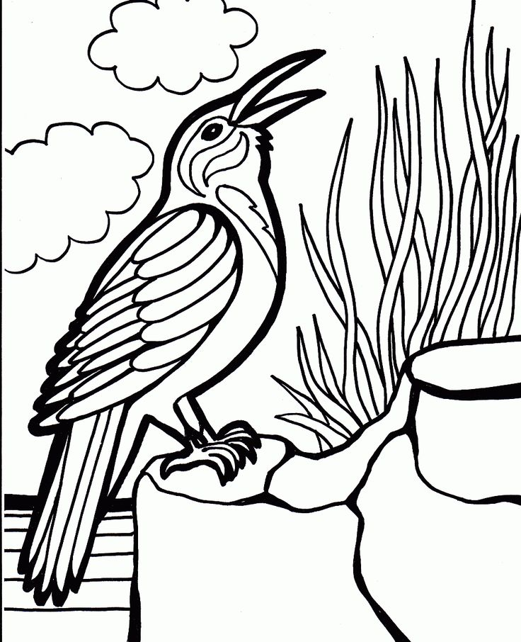 With These Bird Coloring Pages Family And Learning Time Is Never Far Away From