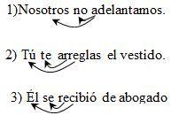 Verbos ejemplos seis
